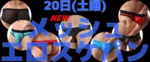 🌞朝11時オープン メッシュスケパン🆕