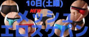 🌞朝11時オープン メッシュスケパン